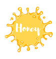 cartoon style honey blot vector image