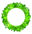 Fresh green leaves border vector image vector image
