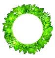 Fresh green leaves border vector image