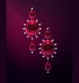 pair of earrings vector image