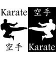 karate kick in the jump vector image vector image