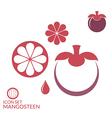 Mangosteen vector image