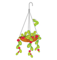 A hanging flowering plant vector image vector image