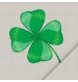 clover leaf on the paper vector image