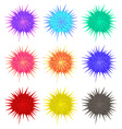 Thorny balls in different colors vector image