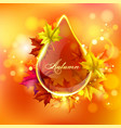 Abstract bright drop vector image
