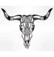 Hand drawn romantic style ornate cow skull vector image