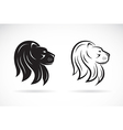 Lions head vector image