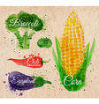 Watercolor Vegetables corn kraft vector image
