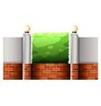 Brick fence and green bush vector image