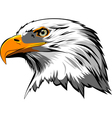 Eagle2 vector image
