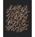 hand drawn elegant alphabet Delicate letters vector image