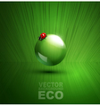 element for ecological design with ladybug vector image