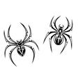 Danger spiders vector image