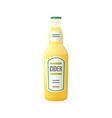 colored flat light cider bottle vector image