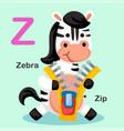 isolated animal alphabet letter z-zip zebra vector image