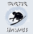 surfer hawaii vector image vector image
