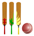 Cricket bats and ball vector image