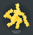 traditional italian kitchen macaroni fusilli vector image