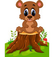 cartoon bear sitting on tree stump vector image