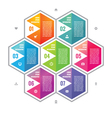 Business infographic concept colored hexagon block vector image