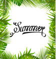 lettering text summer with border made in palm vector image