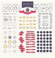 premium design elements great for retro vintage vector image