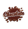 Chocolate drops and blot with lettering vector image