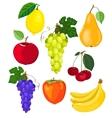 fruit set vector image vector image