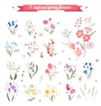 Collection of different stylized spring flowers vector image
