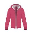 unisex down jacket flat style vector image