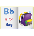 School bag and a book vector image vector image