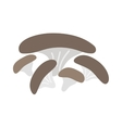 Mushrooms on white background vector image