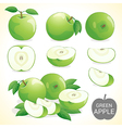 Set of green apple fruit in various format vector image