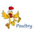 Cartoon cockerel character vector image