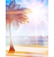 Summer hot holidays poster template vector image