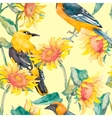 Sunflowers and oriole pattern watercolor vector image