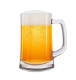 Excellent Isolated mug of beer vector image