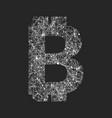symbol of bitcoin technology vector image
