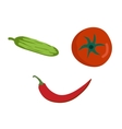 Fresh vegetables smile face on white background vector image