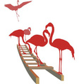 Flamingos on the ladder vector image vector image