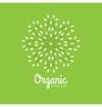 eco organic emblem logo design template vector image