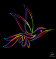 image of an hummingbird vector image vector image