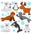polar animals and arctic fish cartoon characters vector image