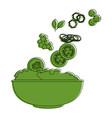 salad bowl gourmet vector image