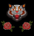 tiger cat with roses vector image