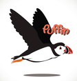 puffin bird 6 vector image