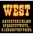 Western Night Font vector image