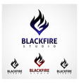 Black Fire Studio vector image vector image
