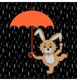 A funny rabbit with umbrella in the rain vector image